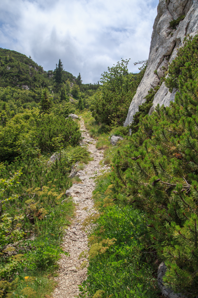 Northern Velebit national park. The park has various hiking trails ranging from moderate to difficult. Hikes take anywhere from 2 hours to the entire day depending on your level of fitness and interest.