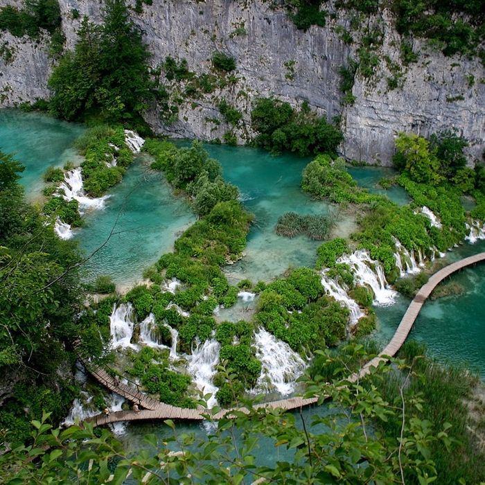 Plitvice Lakes National Park is truly a spectacle of nature, thanks  to the particularity of the environment and for the very rich fauna